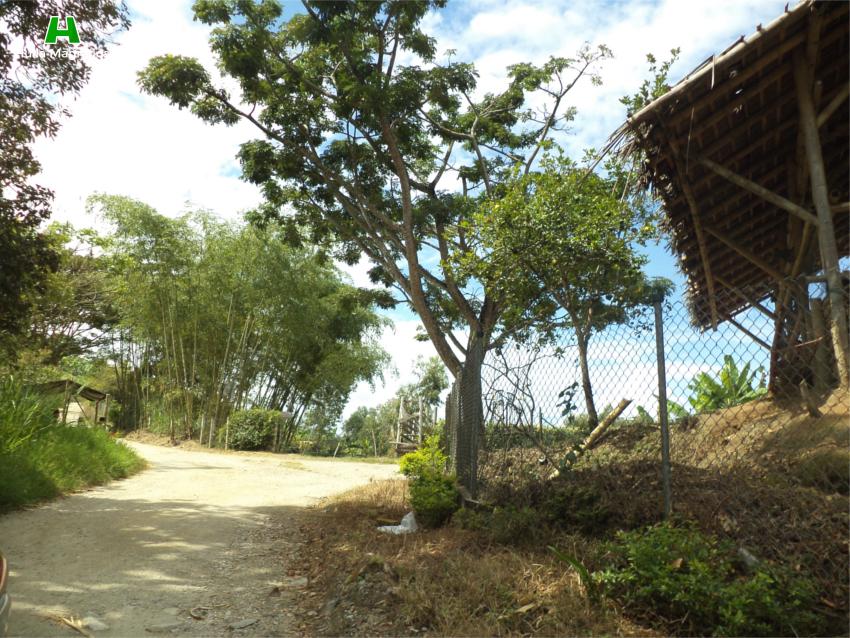 Camino a LomaChata3