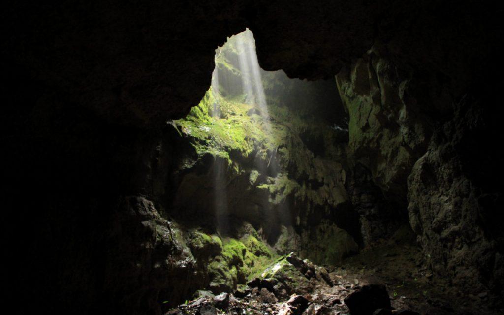 Cueva del Hoyo (Fotografía: Fundación Cerca Viva)
