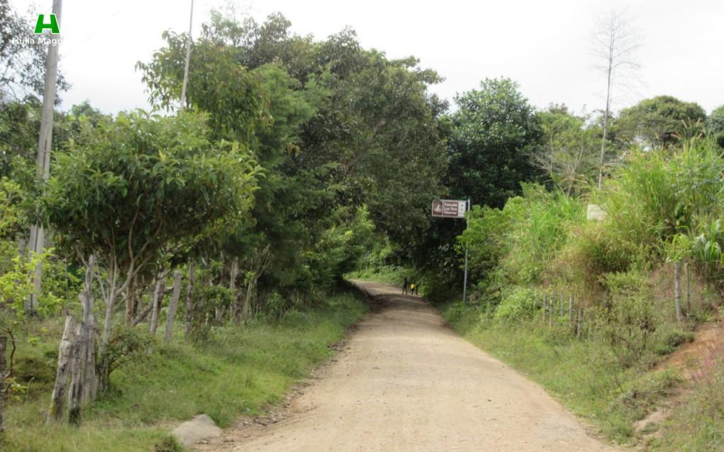 Indicación en la carretera después de la entrada al Parque Arqueológico