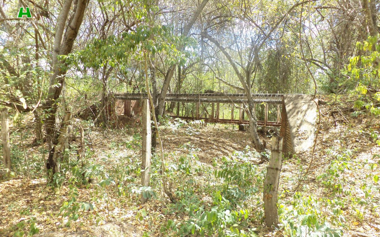 Antiguo puente del ferrocarril
