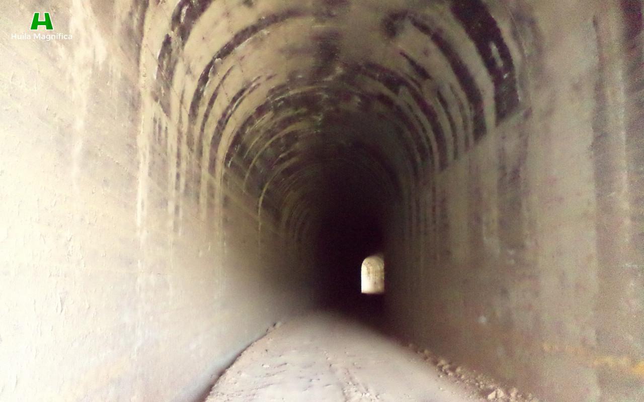 Túneles Golondrinas