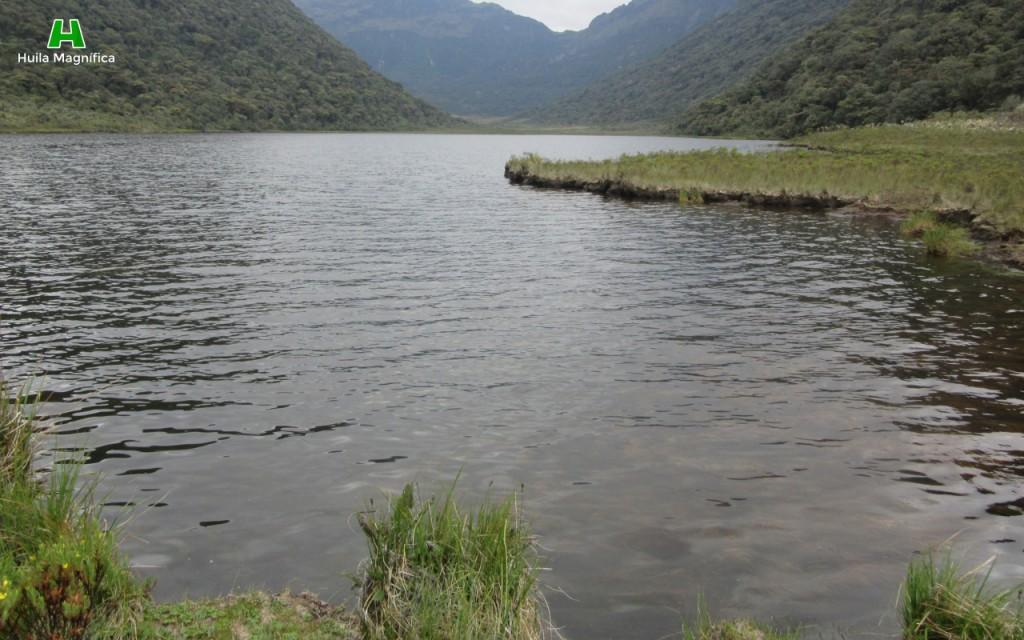 Laguna del Cusiyaco
