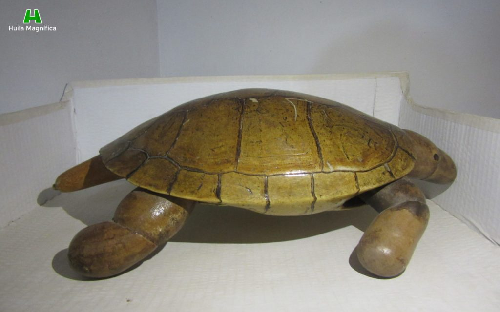 Tortuga en Totumo - Museo Artesanal Cas del Totumo