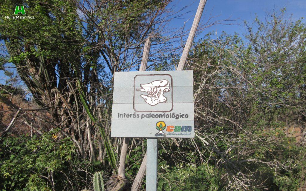 Interés Paleontológico