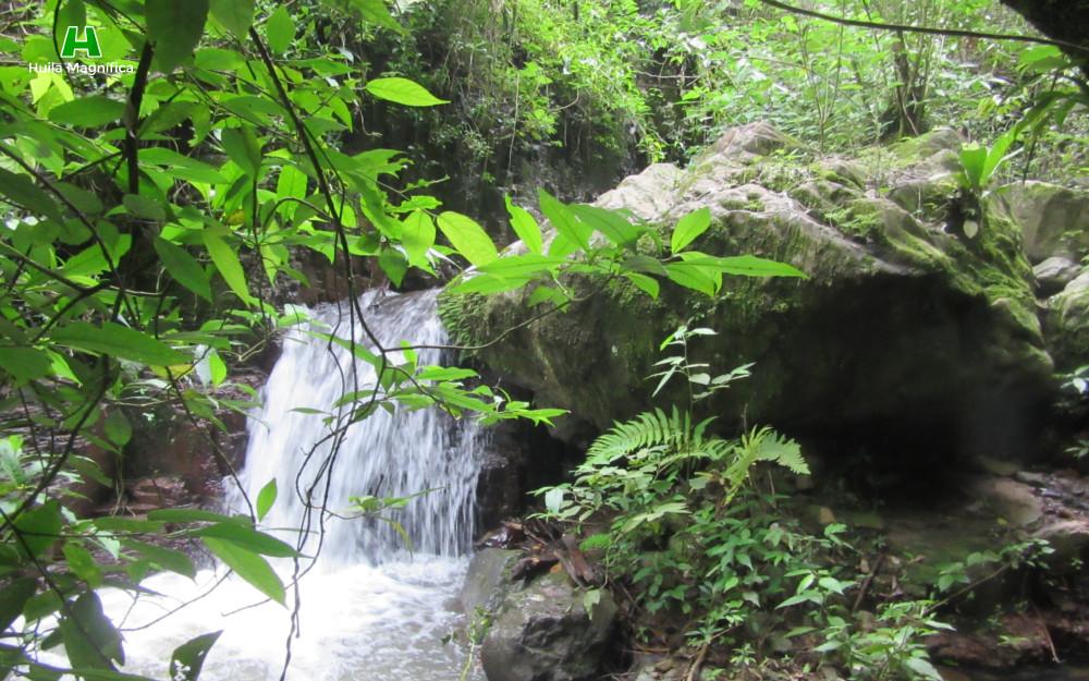 Subiendo por el afluente que lleva sus aguas al río Baché.
