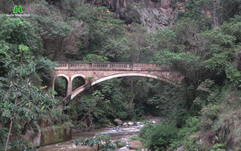 Puente de los Sueños (Palermo)