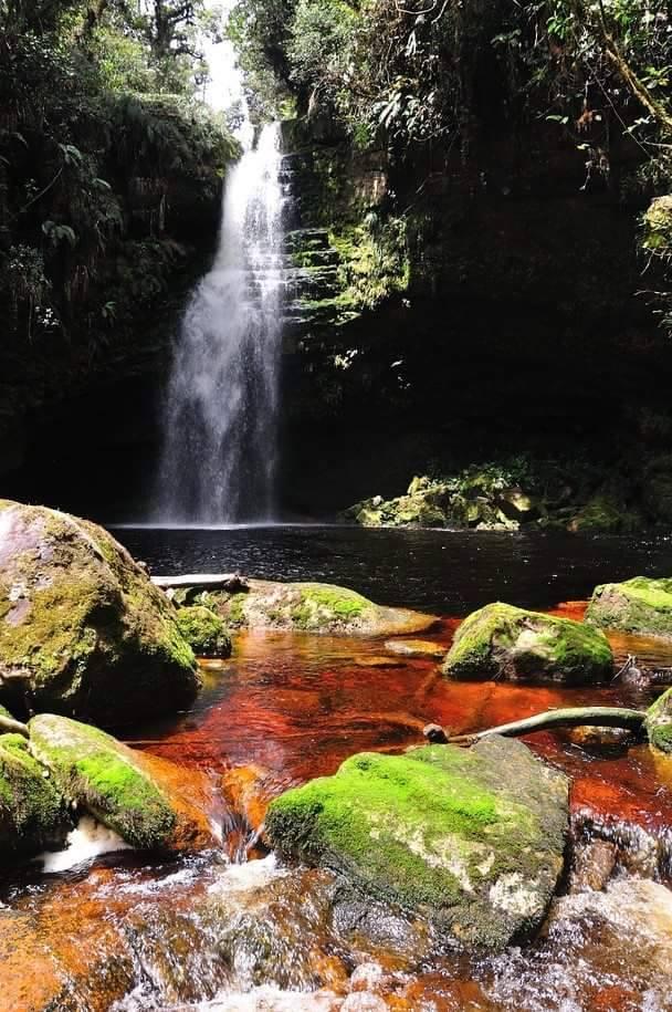 Cascada La Lindosa - PNN Cueva de los Guacháros Gracias a San Adolfo Huila por compartirla.