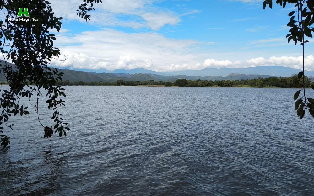 Laguna El Juncal