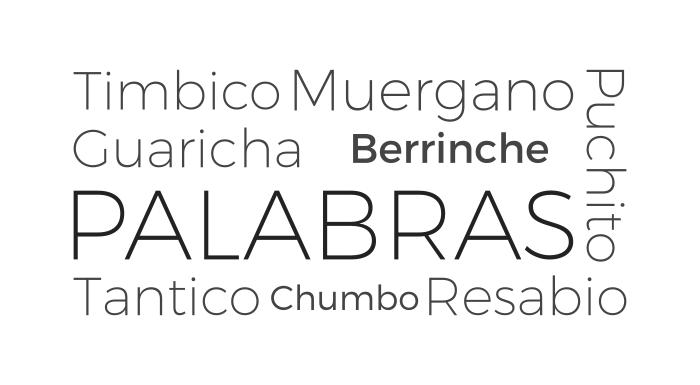 Palabras de ayer y hoy - Timbico Muergano Puchito Guaricha Berrinche Tantico Chumbo Resabio