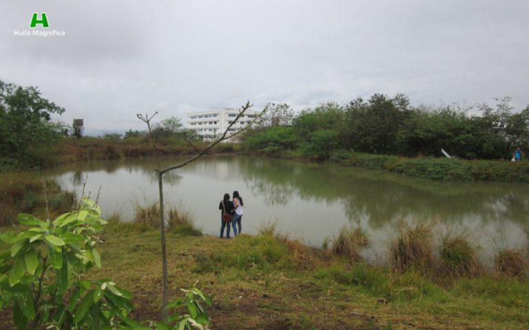 Humedal El Curibano