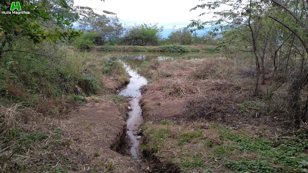 Alimentación hídrica superficial del Humedal