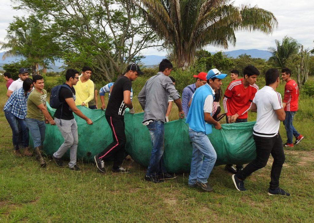 Extracción manual de buchón de agua en el Parque Jardín Botánico de Neiva