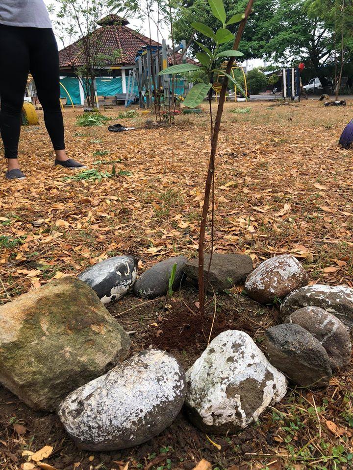 Reforestacion alrededores Humedal hacienda Santa Barbara - Occidente de la ciudad de Neiva