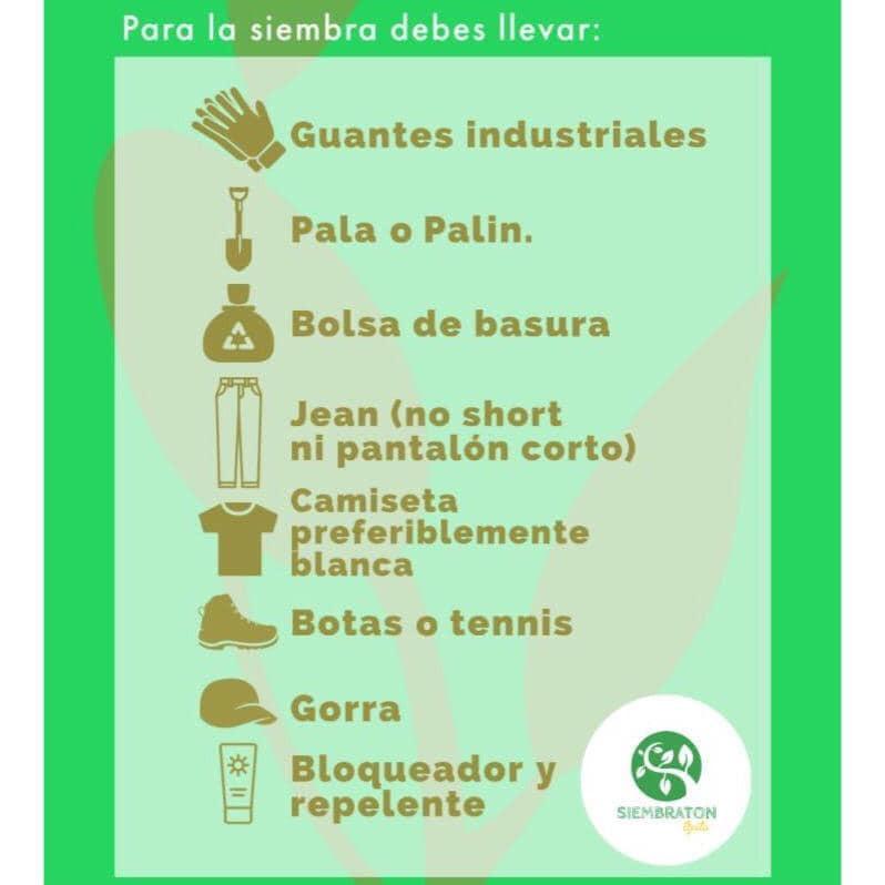 Tener en cuenta para ir a reforestar y limpiar espacios verdes
