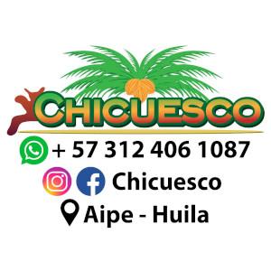 Logotipo de la empresa y contacto
