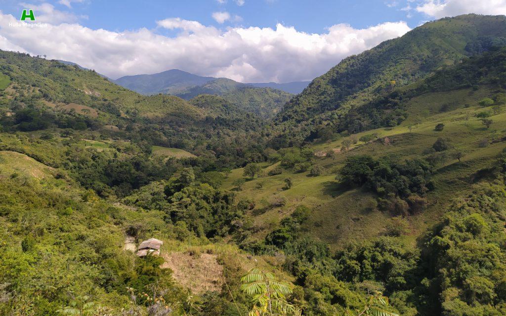 Paisaje desde el Cerro de la Virgen