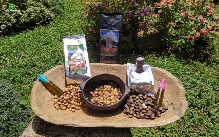 Aceite de aguacate - Café - Chocolate - Té - Sacha Inchi