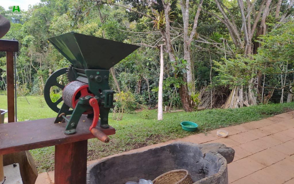 Maquina despulpadora, coco para recoger café, finca Kutanga