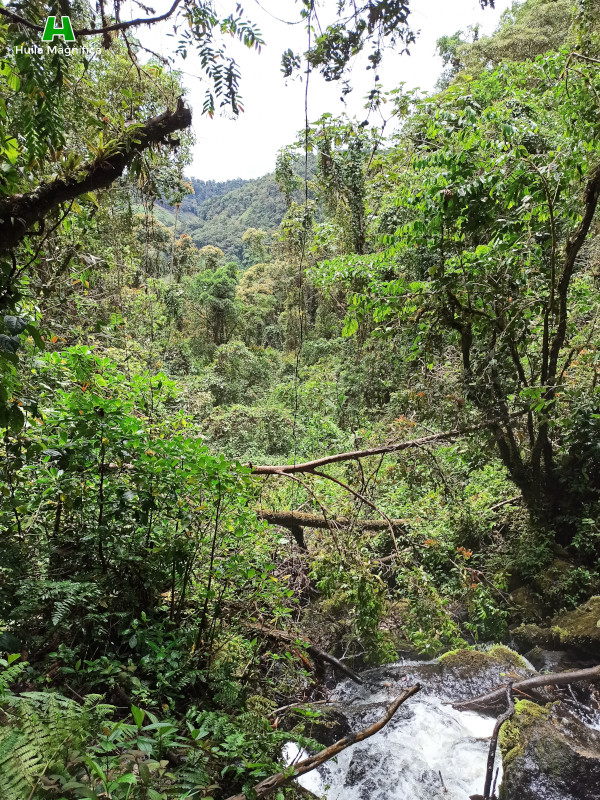 Vista del paisaje frente a la cascada El Socorro