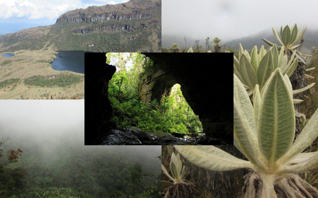 Los 6 Parques Nacionales Naturales en el Huila
