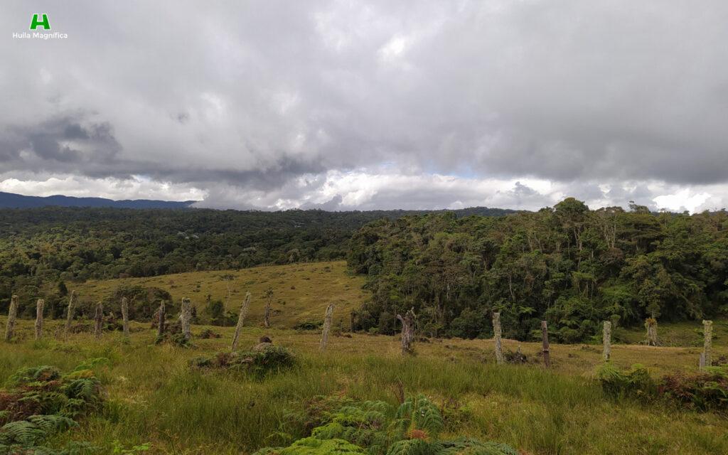 Reserva Natural Portal del Oso